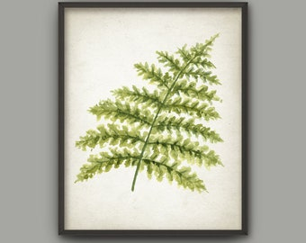 Fern Watercolor Art Print, Woodland Fern Poster, Green Fern Painting, Fern Forest Decor, Botanical Wall Art, Nature Leaves Print AB863