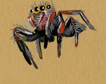 Jumping Spider - brown paper planet fine art print