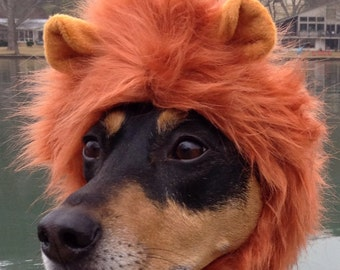 Halloween Dog - Cat Lion Mane for Dogs and cats in signature gift bag