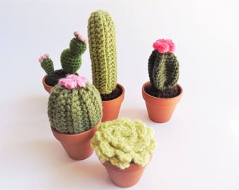 Amigurumi Cactus Crochet Pattern : Flower cactus cushion pdf crochet pattern crochet cactus