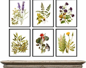 Botanical Print Set - Botanical Wildflowers Print set - Boho Chic Decor - Wildflowers Bohemian Decor - Wall Art - Illustration Print Set