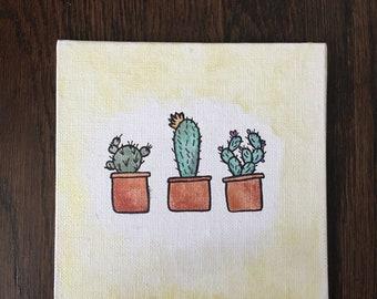 Cute Lil Cacti