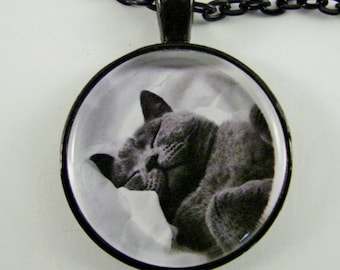 CAT NAP Necklace -- Gorgeous Russian Blue cat peacefully snoozing, Feline art,  For cat lovers