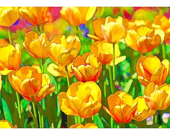 Imagine Series Two: Tulips of Gold