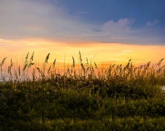 Beach - Path - Sunset - Sea Oats - Blue - Ocean