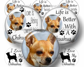 Chihuahua, 1 Inch, Circle, Dogs, Bottle Cap Images, Digital Collage Sheet, Pet, Animal, Instant, Digital Download, Round Image, 2017-1