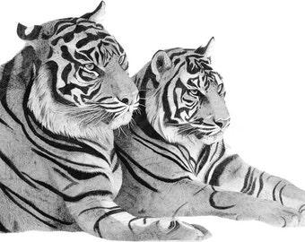 Big Cats set of 5