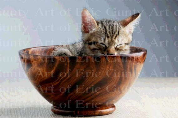 Kitten in a Bowl Birthday - Edible Cake and Cupcake Topper For Birthday's and Parties! - D22950