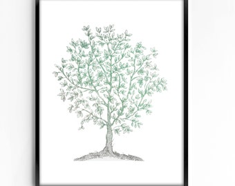 botanical wall art, printable art, wall decor, office decor, home decor, graphic art, art print, vintage botanical, instant download, tree