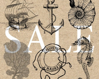 Sale Nautical Sea life Collection Instant Download Digital printable vintage drawing clipart  graphic black and white for art print HQ300dpi