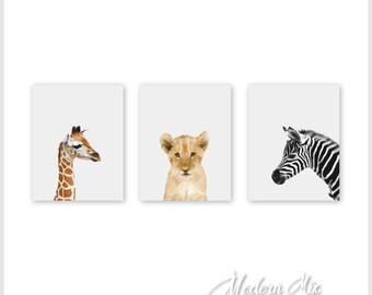 Safari Animals Nursery Decor Triptych Baby Animal Prints Zoo Nursery Prints Lion Zebra Giraffe Set of 3 BAPG 001