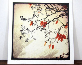 Autumn dream - Expo 30x30cm - signed and numbered print