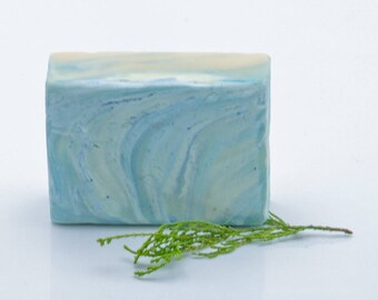 Gift For Him Gift For Dad Vegan Soap Organic Soap Cold Process Soap Beard Soap Fathers Day Gift Sky Blue