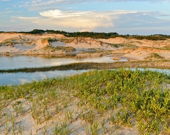 Evening, Dunes - Ludington State Park - Michigan Photography - Stock Photography