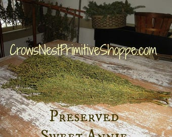 Natural SWEET ANNIE- fragrance herbal scent primitive herb preserved w/ vegetable glycerin sold per bunch decorative perfect for crafting
