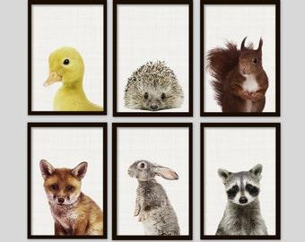 Woodland animals, Woodland nursery, Nursery print set, Nursery prints,Nursery wall art,Nursery art,raccoon,fox,rabbit,duck,squirrel,hedgehog