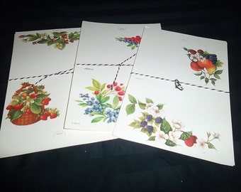 Fruit Fold Over Notes, Seal and Send, Post It Notes, Set of 4, Choice of 3