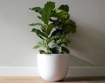 Planter | Pot | Indoor & Outdoor Modern Lightweight Hand Painted Planters | Large Planter | Matte White | Minimalist Shape | Plant Pot