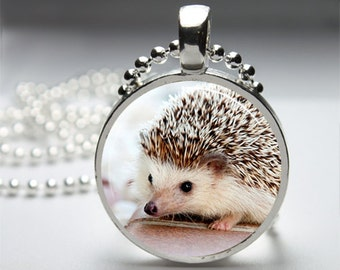 Cute Hedgehog Round Pendant Necklace with Silver Ball or Snake Chain Necklace or Key Ring
