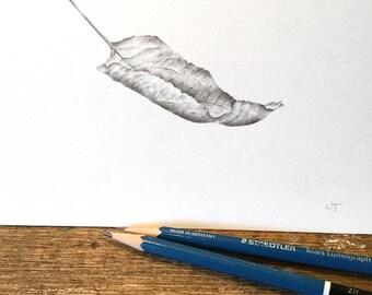 Float, apple tree leaf - original drawing