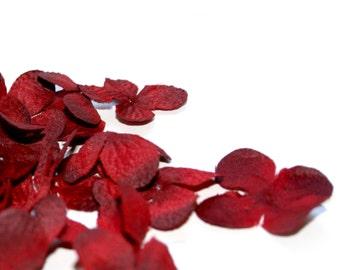 100 Silk Hydrangea Blossoms in Dark Red - Artificial Flowers, Silk Blossoms - PRE-ORDER