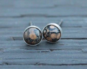 Leopard Skin Jasper 6mm Bezel Set on Niobium / Titanium Posts (Nickel Free & Hypoallergenic Stud Earrings for Sensitive Ears)