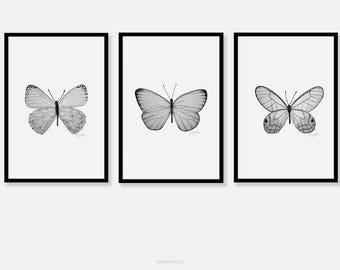 Butterfly Art Prints Black And White Pencil Drawing Fine