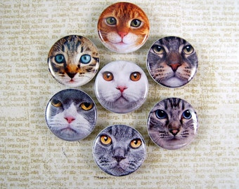 Cat Magnets Pins Feline Lovers Gift Party Favors Gift Sets