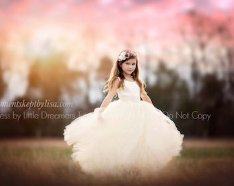 READY to SHIP - Size 3 - The Juliet Dress in Ivory - Flower Girl Tutu Dress