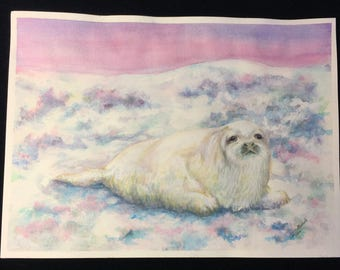 """Unframed Original Watercolor Painting of a White Seal (15"""" x 11"""")"""