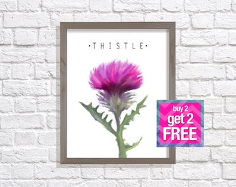 Thistle Print, Pink Thistle Art, Floral art, Modern Decor, Botanical Print, floral print, flower artwork, Thistle poster, Digital download