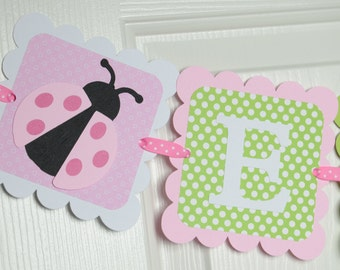 Lady Bug Name Banner, Girl Banner, Chevron Baby Shower, Chevron Party, Chevron Banner, Light Green, Hot pink, and Light Pink Banner