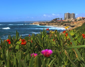 La Jolla Coastline, Ocean, Ice Plant, Flowers, Buildings, Pacific Coast, San Diego, California