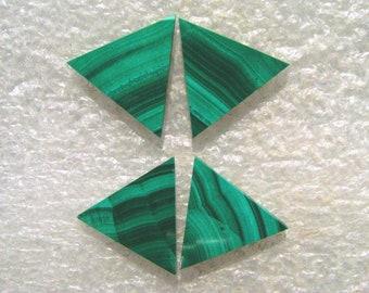 Malachite Triangle Cabochons Group