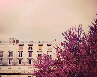 Bloom - Paris Landscape Photography Print