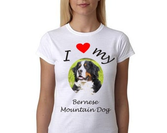 Bernese Mountain Dog on shirt - Shirt with Bernese Mountain Dog picture