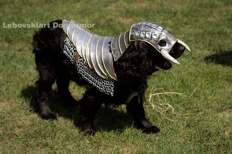 Chest Plate Dog Harness Pets At He