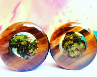Tigers Eye Cannabis Filled Plugs-Weed Plugs-Weed Gifts-Weed Gifts Boyfriend-Weed-Tigers Eye Tunnels-Tigers Eye Jewelry-Gifts for Stoners