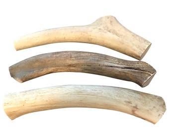 Organic Deer Antler Dog Chew   Extra Large Antler   Natural Dog Bone