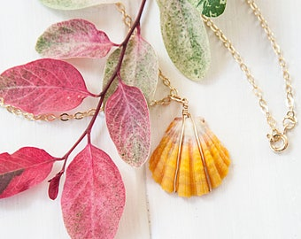"""14k Gold Filled Wire Wrapped Sunrise Shell Pendant Necklace, 1"""" Bright Yellow Sunrise Shell Gold Necklace"""
