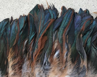 Strung Natural Iridecent Rooster Coque Tails 5-8 inches in height-bronze coque brown
