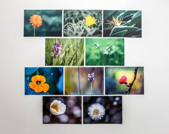 """Postcards set """"Flowers"""", 10 different pictures"""