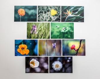 """Postkartenset """"Blumen"""", 10 verschiedene Motive"""