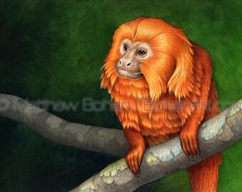 Golden-lion Tamarin, Monkey Print, Monkey Art, Monkey Painting, Watercolor Print, Monkey Wall Art, Home Decor, Kids Room Decor, Wildlife