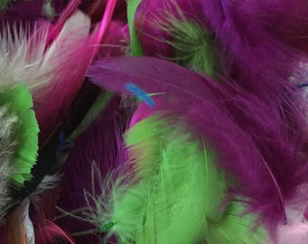 Destache feathers, sale feathers, colorful feathers