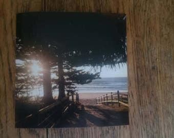 Landscape Photography, Coastal Pines, beach, limited edition, wall art, home decor, digital print, photo print, ocean, sea, Australia