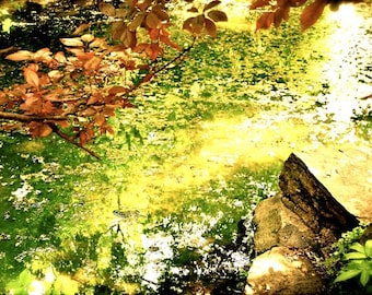 Fairies - Abstract Photography, Lake Scenery, Beautiful Nature, Water Art, Light, Sun, Glittery, Hangzhou West Lake, Yellow, Warm Decor, Spa