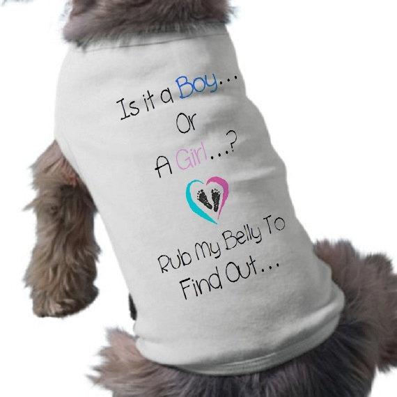 Baby Gender Reveal Dog T Shirt It S A Boy Dog Shirt
