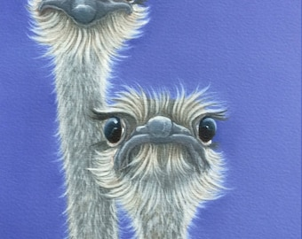 """ostrich painting """"What's Up"""""""