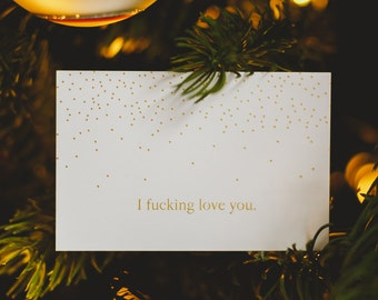 I fucking love you - Holiday Tags SET of 10!